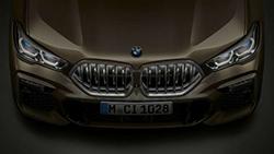 Решетка радиатора BMW Iconic Glow